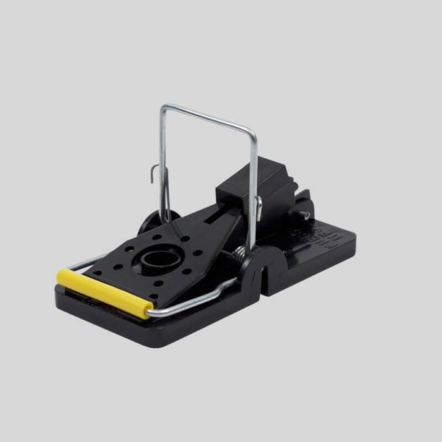 Snap E Mouse Trap economical and effective